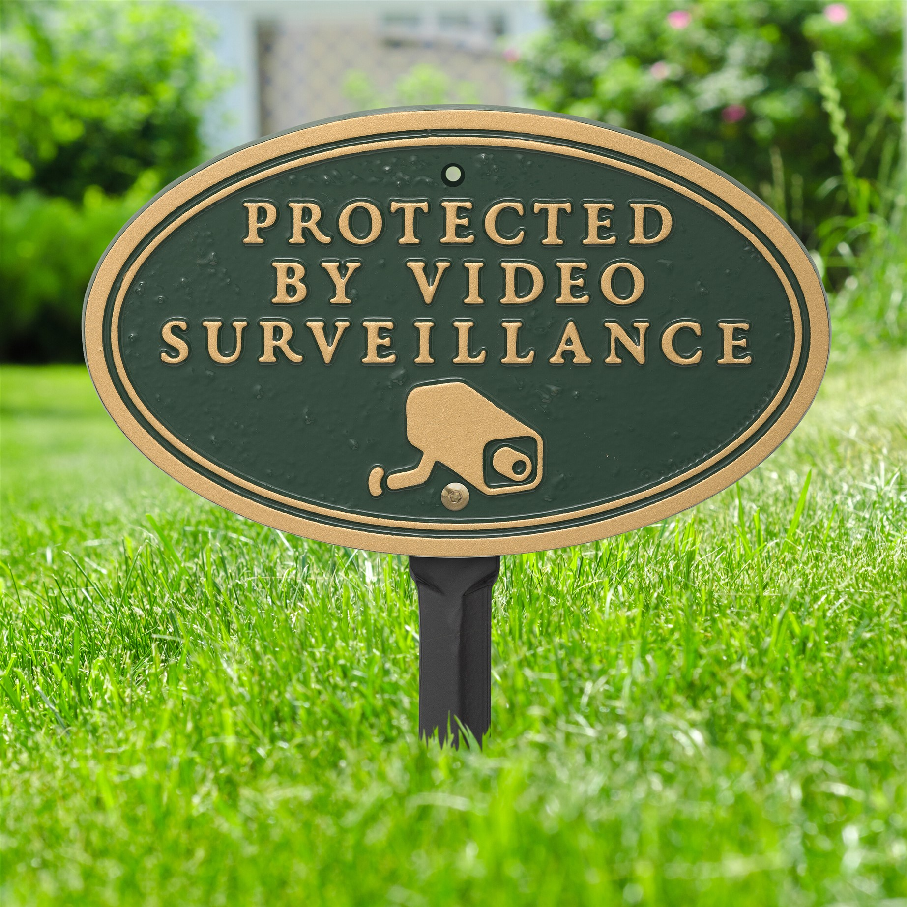 Surveillance Camera Plaque Oval Shape Green Amp Gold